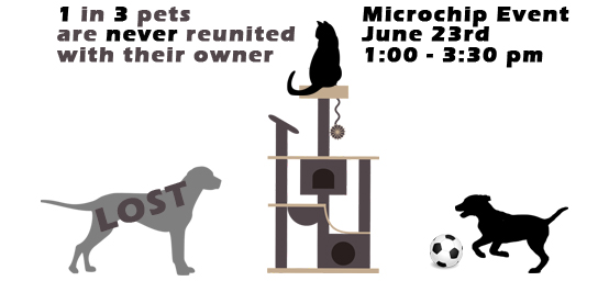 Free Microchipping Event