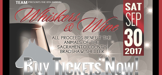 8th Annual Whiskers & Wine
