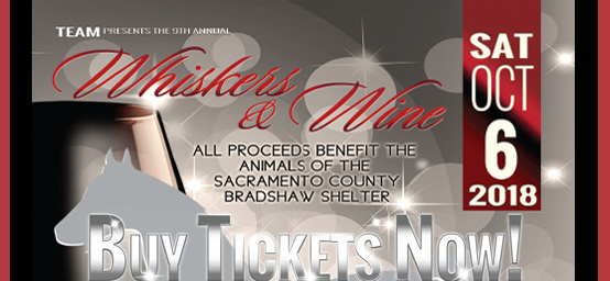 Whiskers & Wine Event (Oct 6th) - Purchase Tickets Now