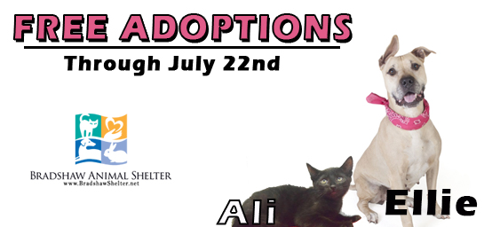 Free Adoptions Through July 22nd